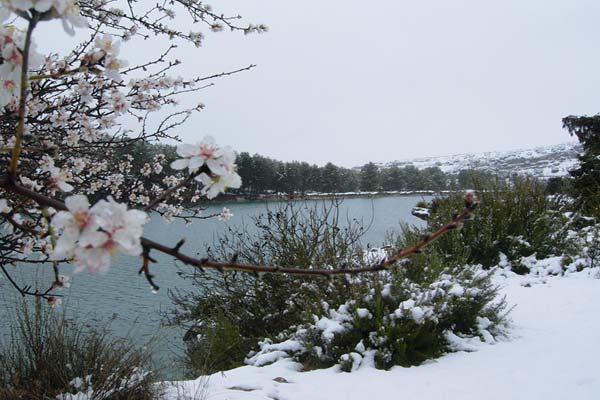 Las Lagunas de Ruidera en Primavera